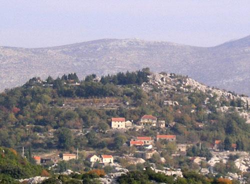 Brestica