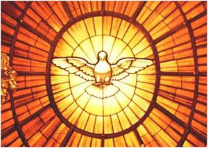 Najnovije o svetoj krizmi!